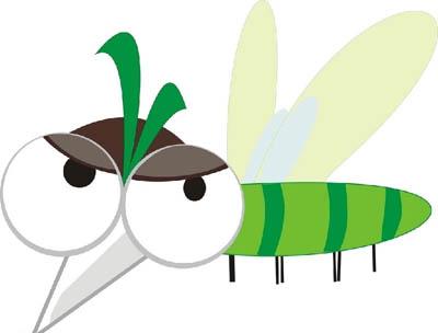 公蚊子其实是吃素 只有雌蚊子才吸血