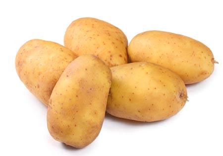 绿土豆为什么不能吃