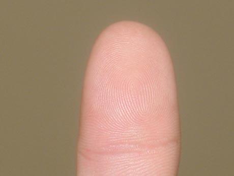"""从手指上的""""斗""""居然能看出一个人的体育天赋?"""