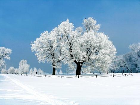 奇异的彩色雪