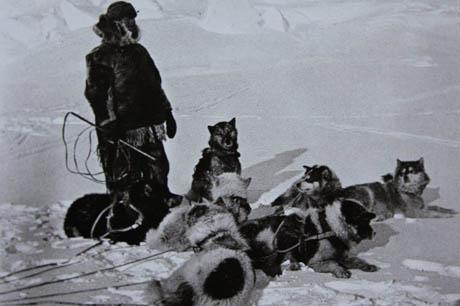 阿蒙森—人类第一个到达南极的人