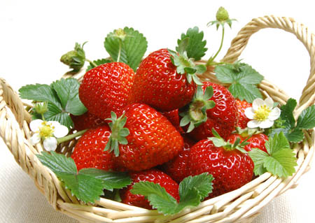 【辟谣】草莓畸形膨大会致癌吗
