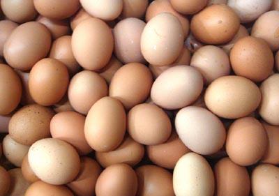 红皮鸡蛋和白皮鸡蛋哪个更有营养