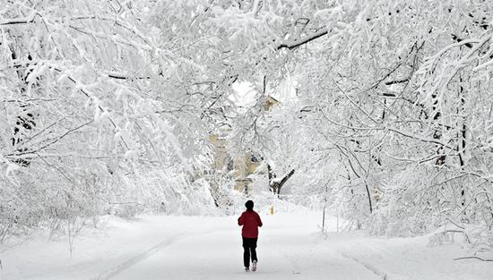 为什么一下雪 世界就变得很安静