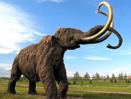猛犸灭绝之谜 猛犸象怎么灭绝的