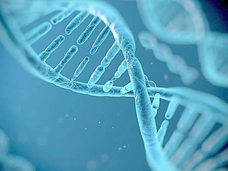 未来基因能量身定做吗