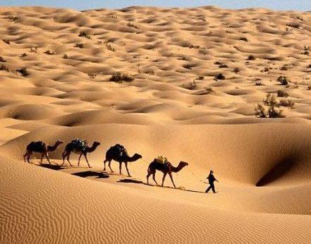 非洲一年四季都热得要命吗