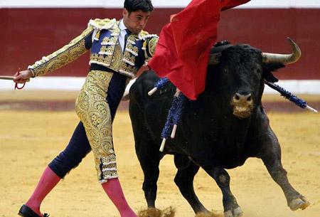 西班牙斗牛士为什么要挥舞红色的布