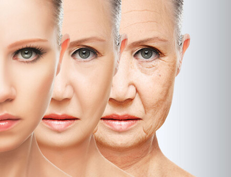 为什么人变老后脸上会长皱纹