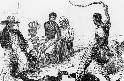 斐尔坝拉族—从不弯腰的民族