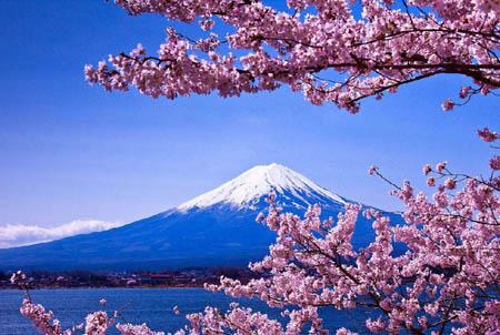 富士山竟然属于私人所有 而不归政府