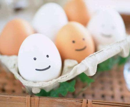 鸡蛋竖着放置更容易储存吗