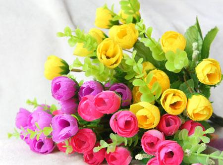 花为什么有香味 所有花都有香味吗