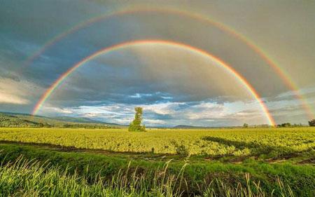 为什么彩虹是弯曲的而不是直的