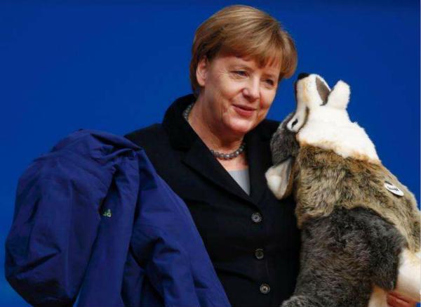 德国人为每只狗平均每月花费多少钱?