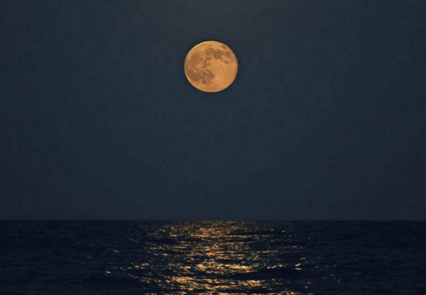 地平面附近的月亮看起来更大吗