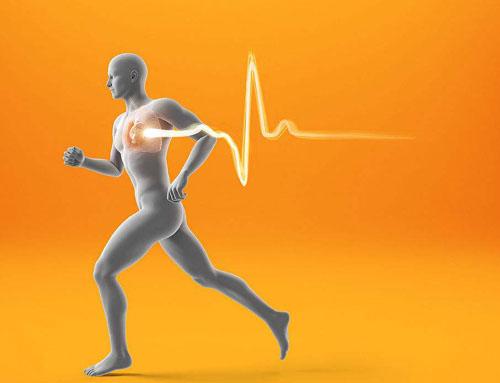 为什么奔跑时心脏会剧烈地跳动