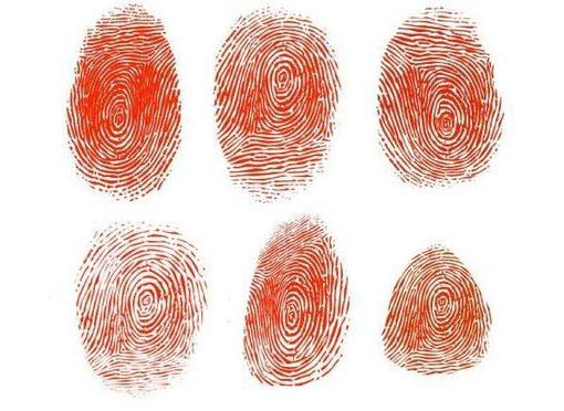 每个人都有指纹吗?不是的!