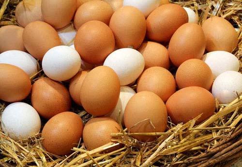 鸡蛋为什么一头大一头小