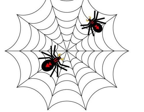 有的蜘蛛为什么会吃自己的同类
