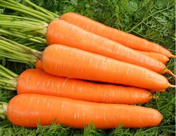 胡萝卜不是萝卜