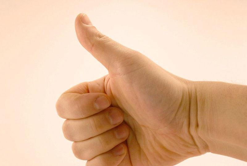 为什么人的大拇指只有两节