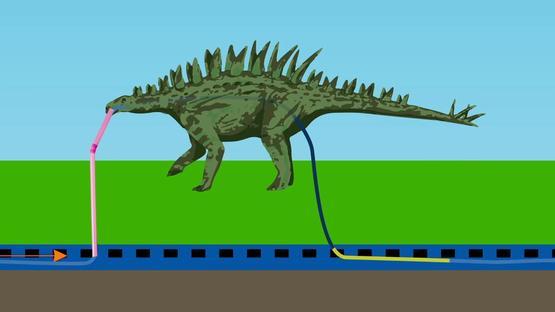 我们喝的水可能是恐龙的尿
