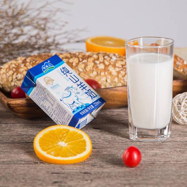 羊奶更容易吸收营养更好?新生儿不宜喝