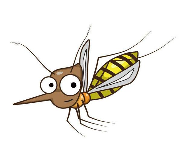 大多数蚊子对人类无害