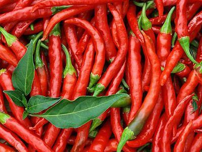 含维生素最多的蔬菜是辣椒