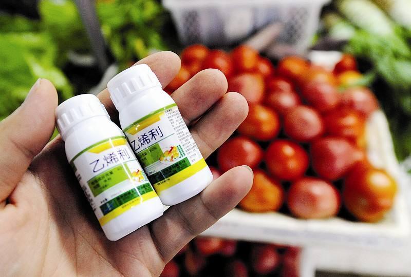 乙烯利催熟蔬果可致性早熟吗?属于过度担心