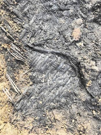 江苏人6000年前就开始用席子