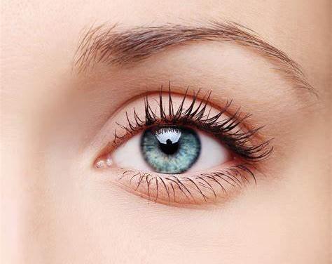人的眼睛有5亿多像素