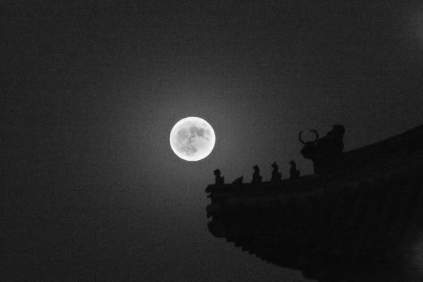 月亮为何有时白天升起有时晚上升起