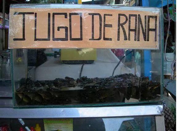 秘鲁人爱饮榨青蛙汁