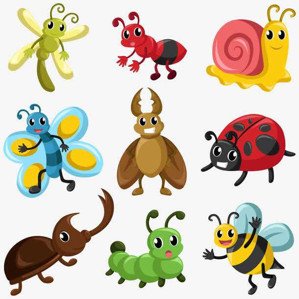昆虫也有自己的偏爱颜色