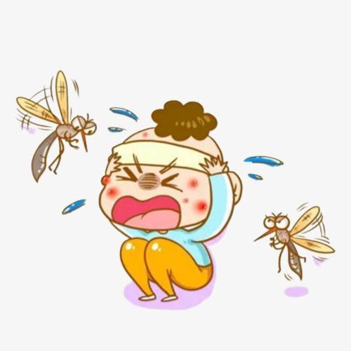 """为什么蚊子总在关灯后才发出""""嗡嗡""""声"""
