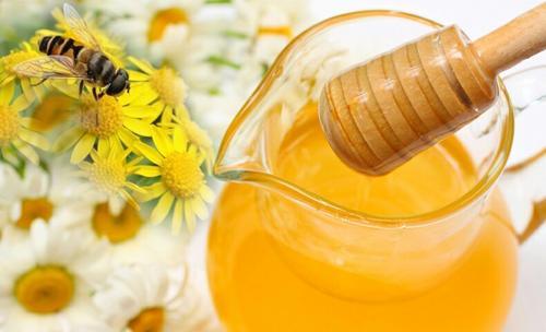 保存最久的蜂蜜已有3000年历史